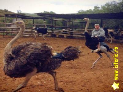 abaa-riding-an-ostrich.jpg